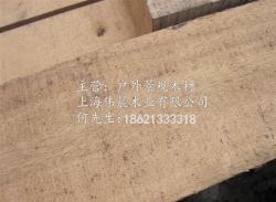苏州黄柳桉(榄仁木)